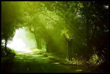 pilgrim by werol