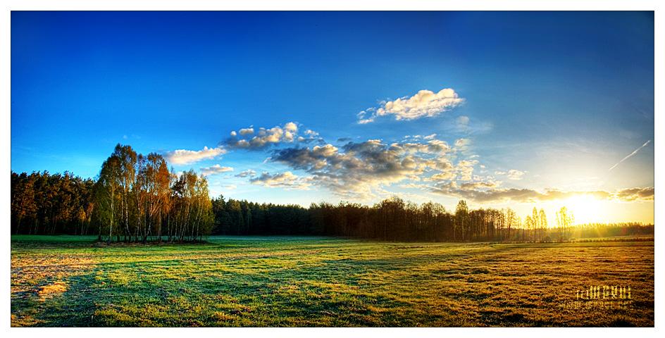 sweet sunrise