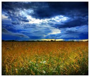 storm by werol