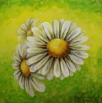 Watercolor - Daisies