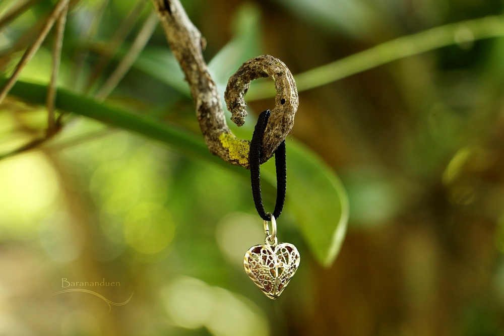 Filigree Heart by barananduen