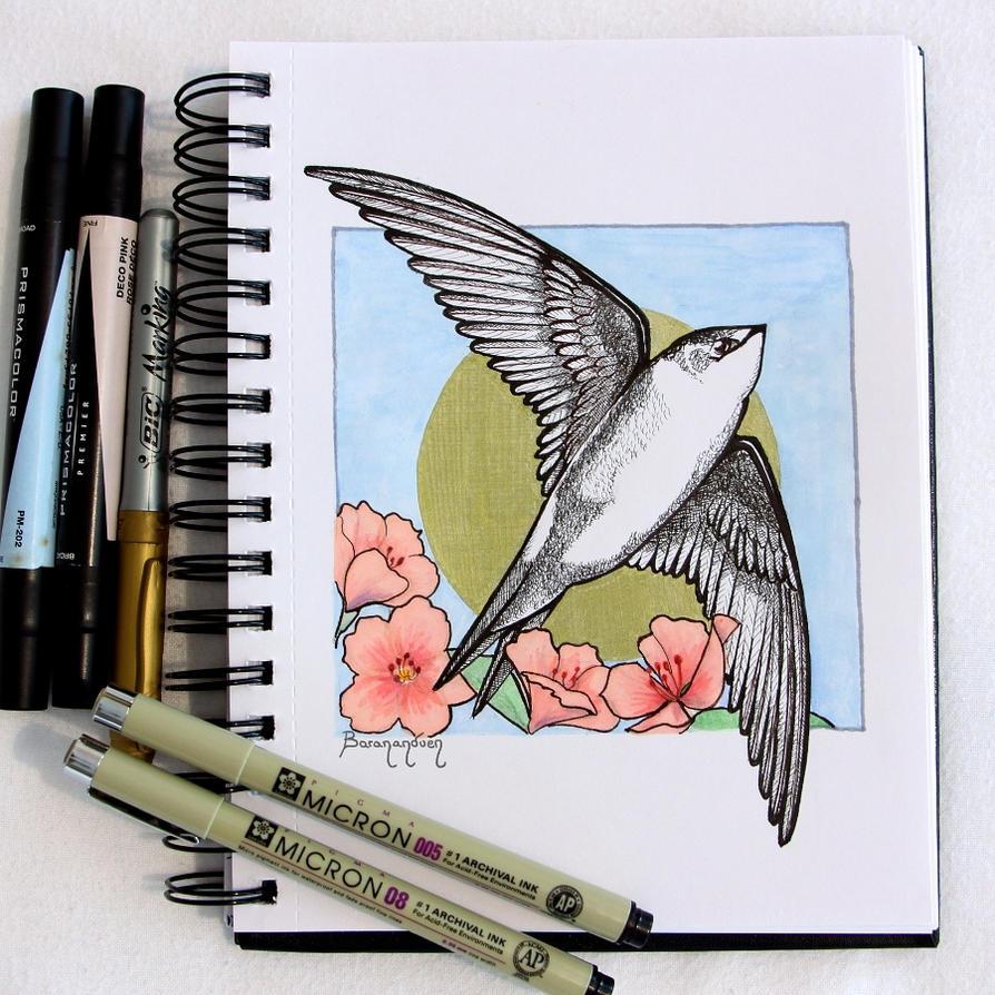 Inktober 01 - Swift by barananduen