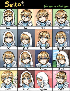 Expression Meme (Seito)