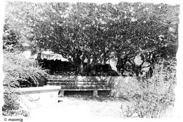 Parc Pre Vert 19