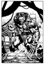 Wolverine by JulienHB