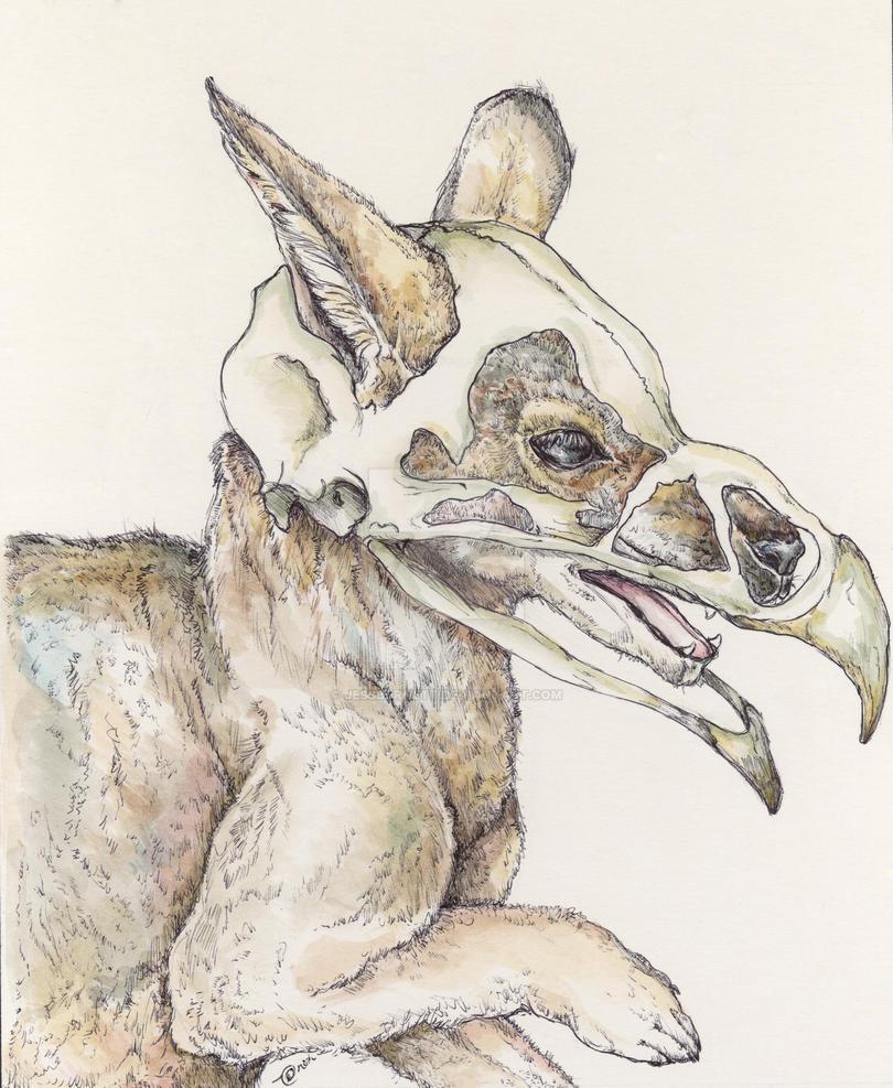 Wolbabone  by jessburnett