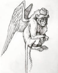 Flying Monkey Sketch