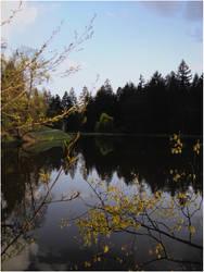Mirror Lake... by karala-chan