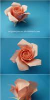 Origami Pentagon Rose