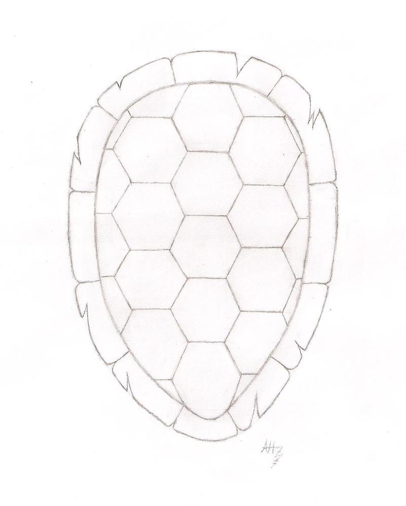 turtle shell by azoresangel on deviantart