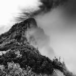 -Guardian of  mist-