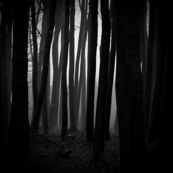 -Direction to source- by Janek-Sedlar