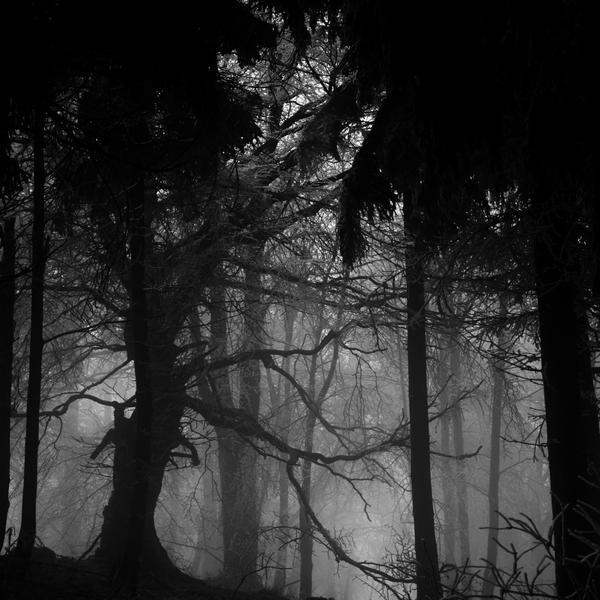 -Tormentor- by Janek-Sedlar
