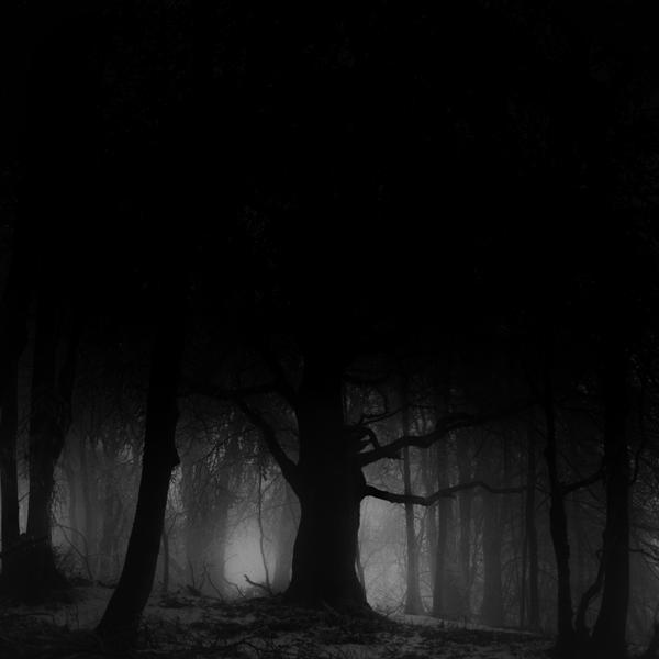 -Shadows- by Janek-Sedlar