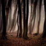 -Forgotten song of autumn- by Janek-Sedlar