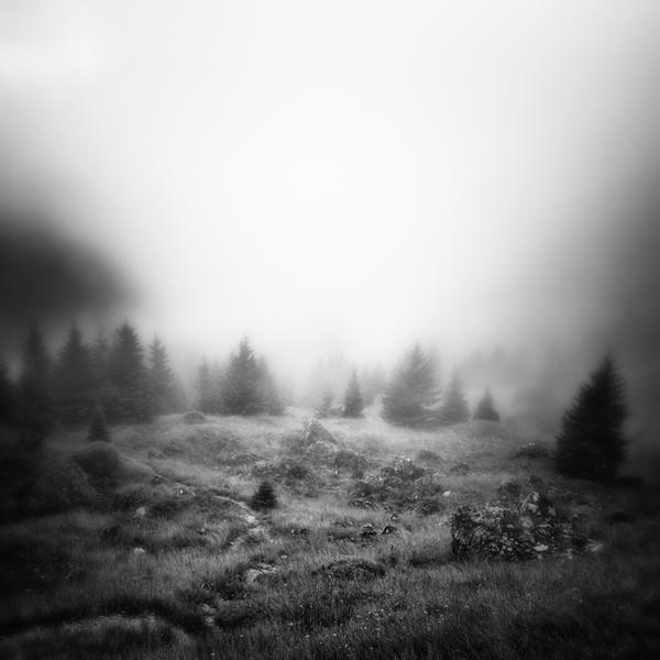 -The way back- by Janek-Sedlar