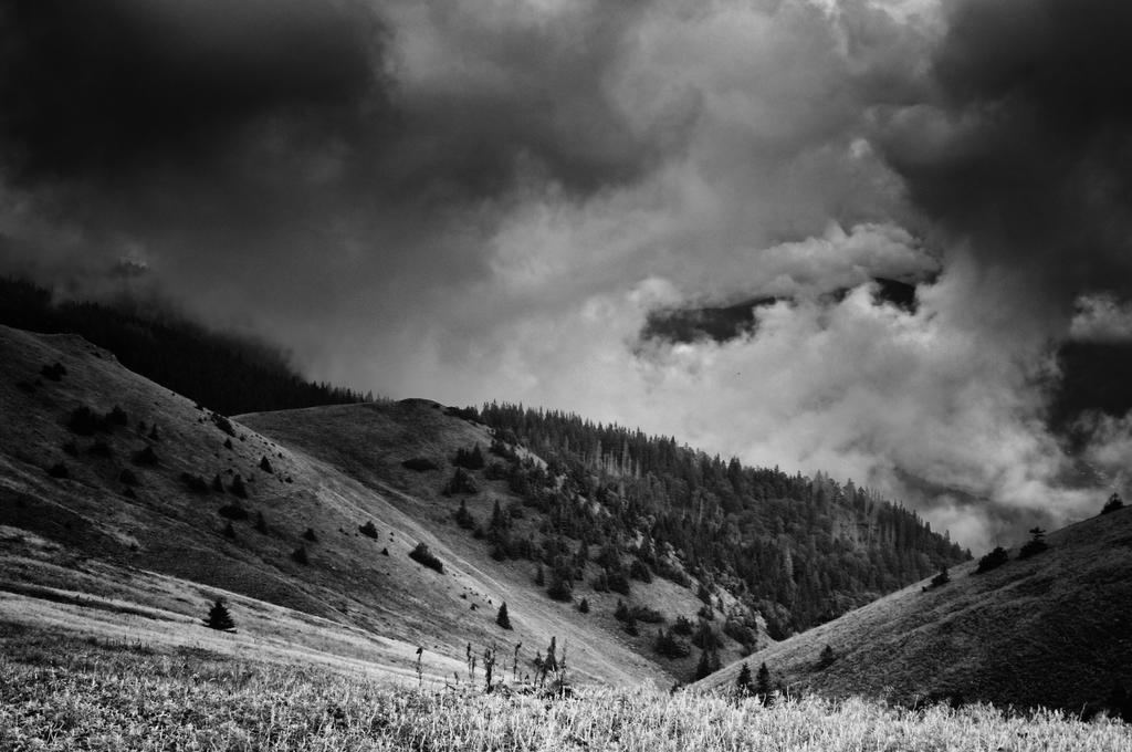 -Breathing- by Janek-Sedlar
