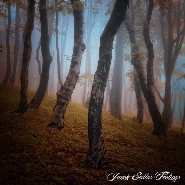 -Warped generation- by Janek-Sedlar