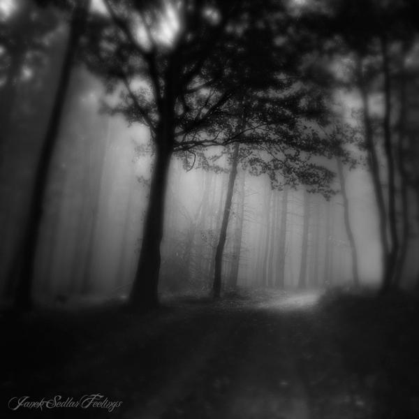 -Spes moritur ultima- by Janek-Sedlar