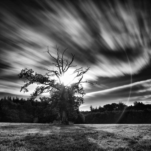 -Keeper of the light- by Janek-Sedlar