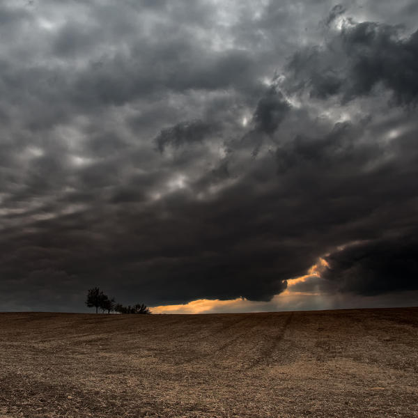 -Locking the field- by Janek-Sedlar