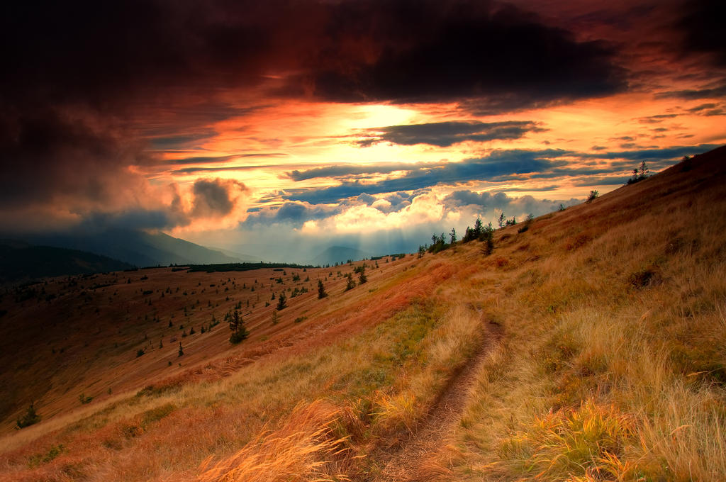 -Emotive evening- by Janek-Sedlar