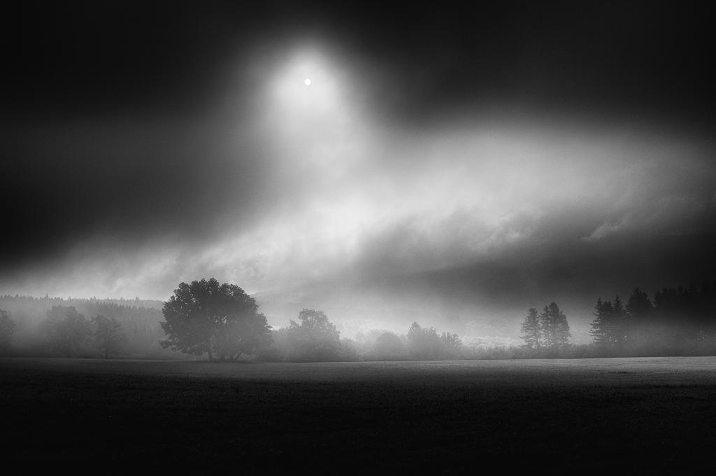 -Chiaroscuro- by Janek-Sedlar