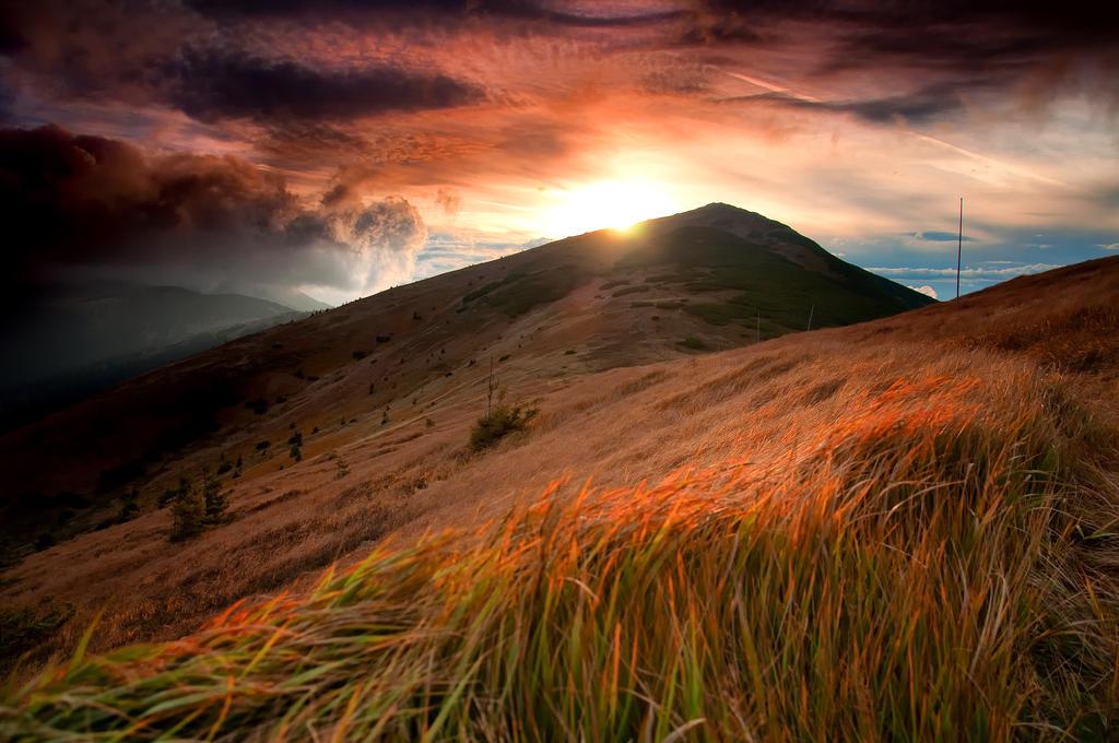 -Last rays- by Janek-Sedlar
