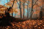 -Quiet blues of fallen leaves-