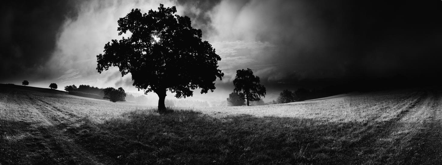 -Dumb witness of being- by Janek-Sedlar