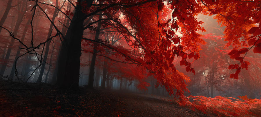 -Sacred shivers- by Janek-Sedlar