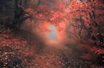 -Inner portal-