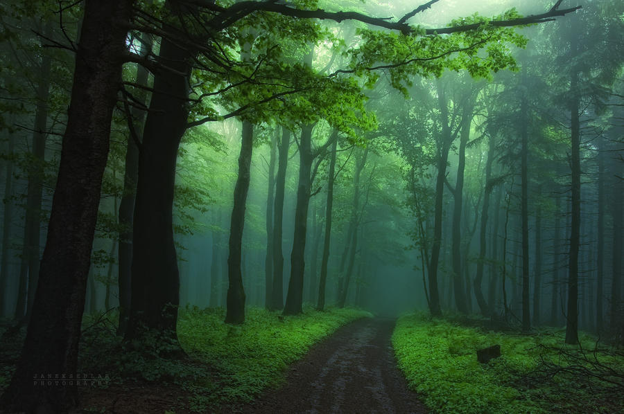 -Secrecy of transformation- by Janek-Sedlar