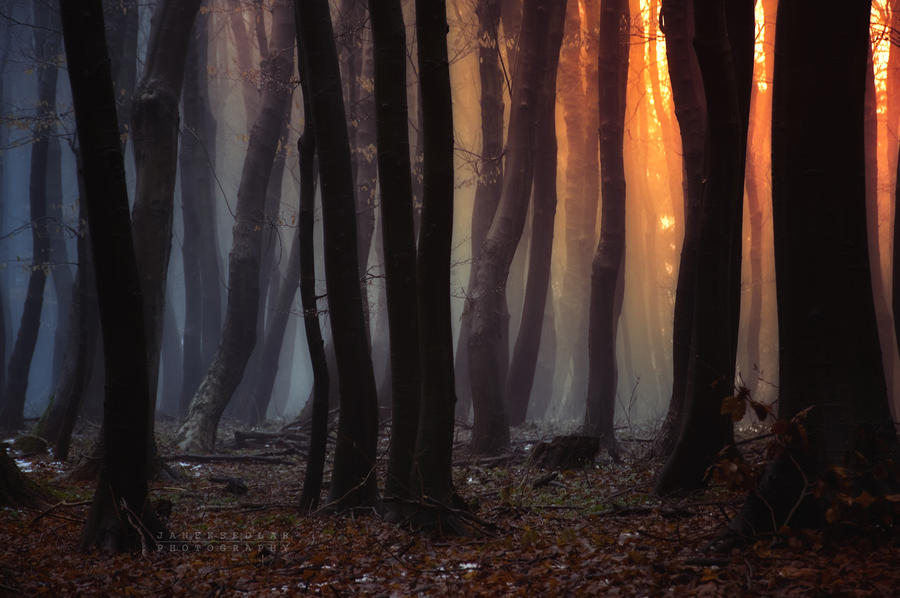 -Forgotten song of autumn- by Janek-Sedlar