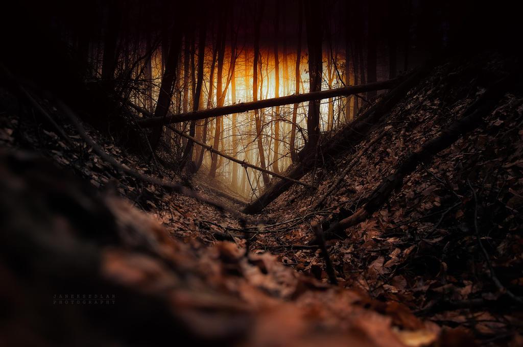 -Trapped desire- by Janek-Sedlar