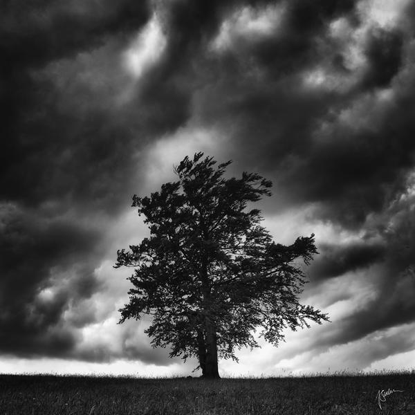 -Keeper of the soul- by Janek-Sedlar