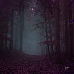 -Distant echoes of my soul- by Janek-Sedlar