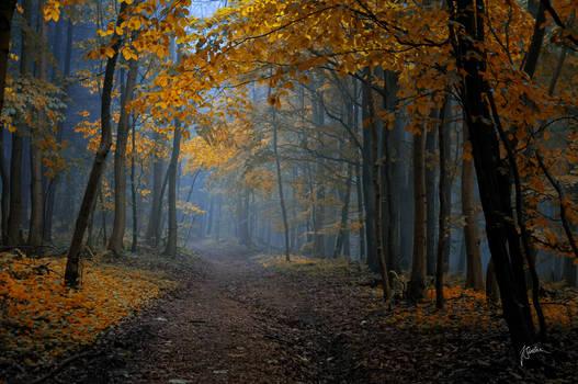 -Saphire road-