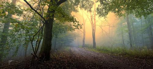 -Autumnal conjuration- by Janek-Sedlar