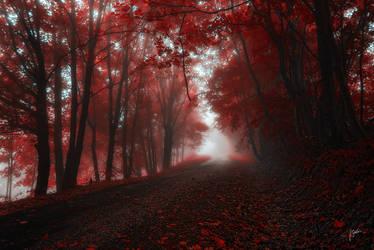 -Ret(d) (t)dears- by Janek-Sedlar