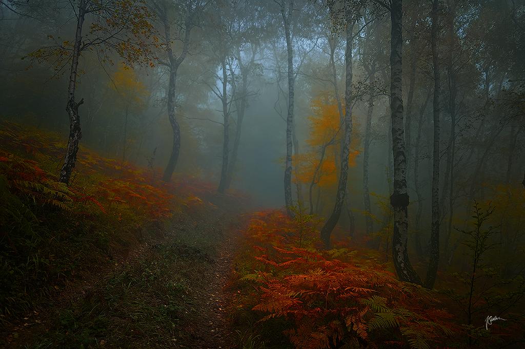 -Road to secrecy- by Janek-Sedlar