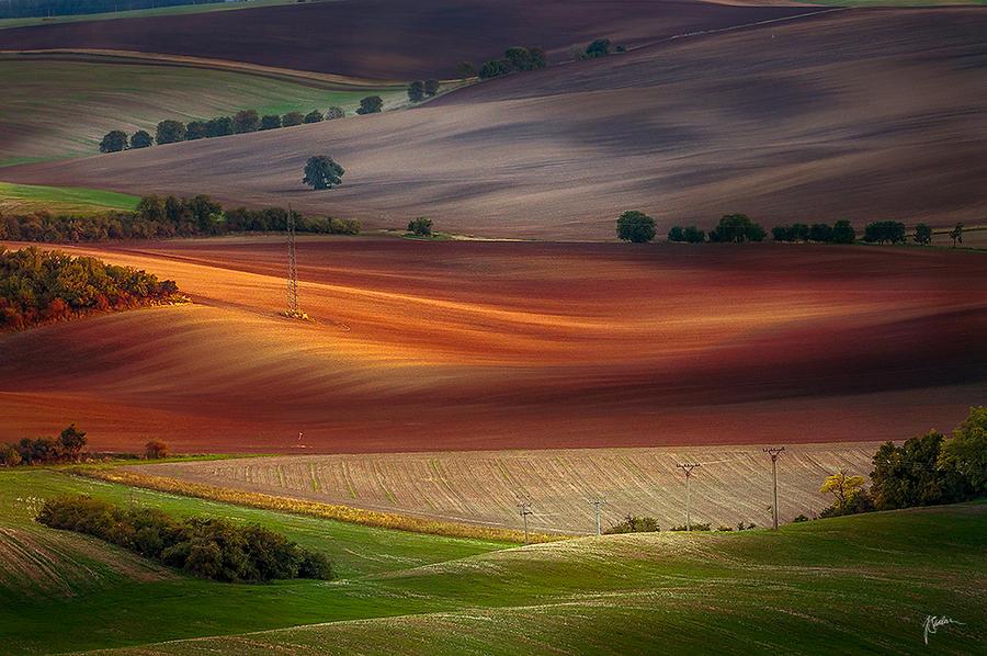 -Moravian fields- by Janek-Sedlar