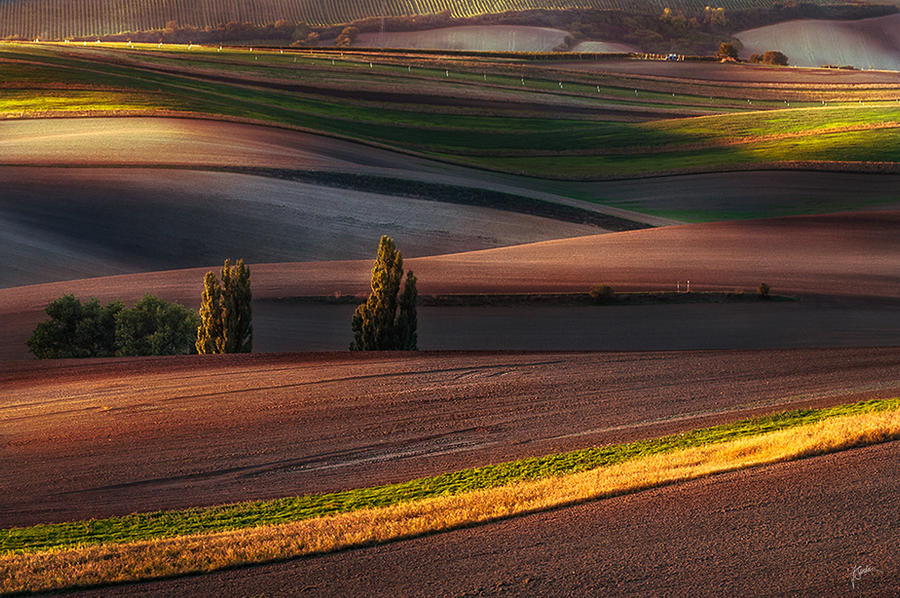 -Moravian fields III- by Janek-Sedlar