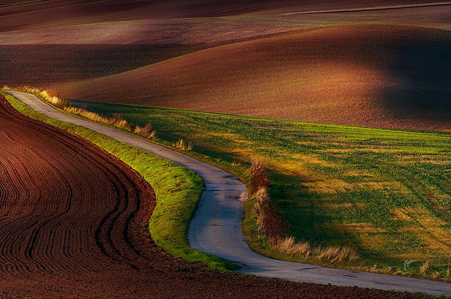-Moravian lines- by Janek-Sedlar