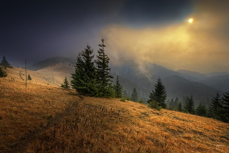 -Long way to home- by Janek-Sedlar