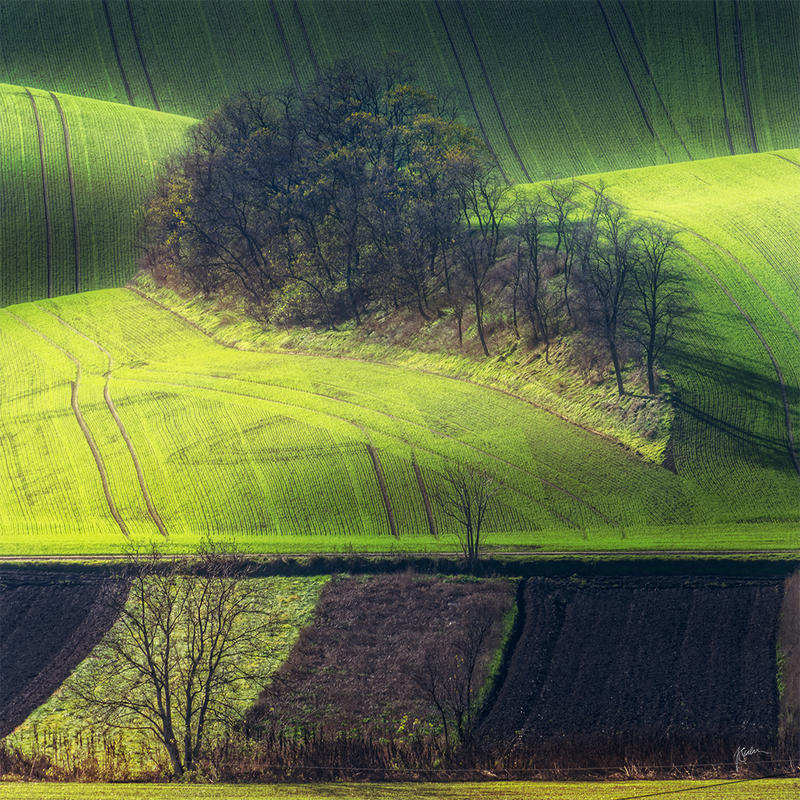 -Moravian island- by Janek-Sedlar