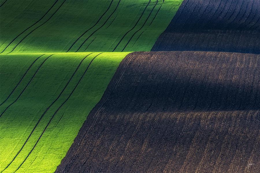 -Magical fields- by Janek-Sedlar