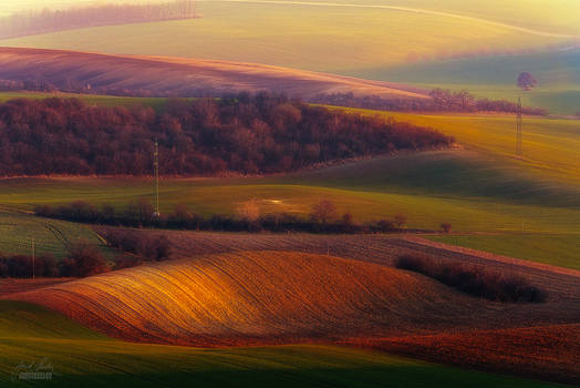 -Late evening in Moravia-