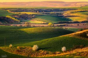 -Spring in Moravia III- by Janek-Sedlar