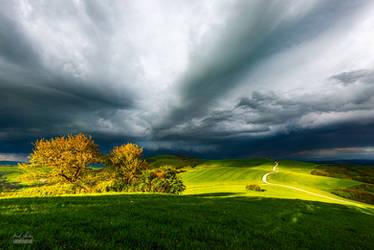 -Song of the springstorm- by Janek-Sedlar